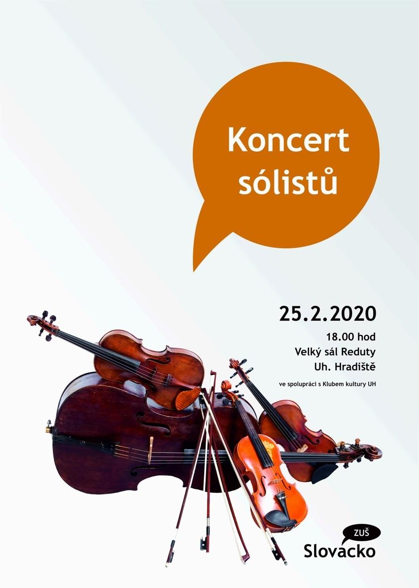 Koncerty sólistů